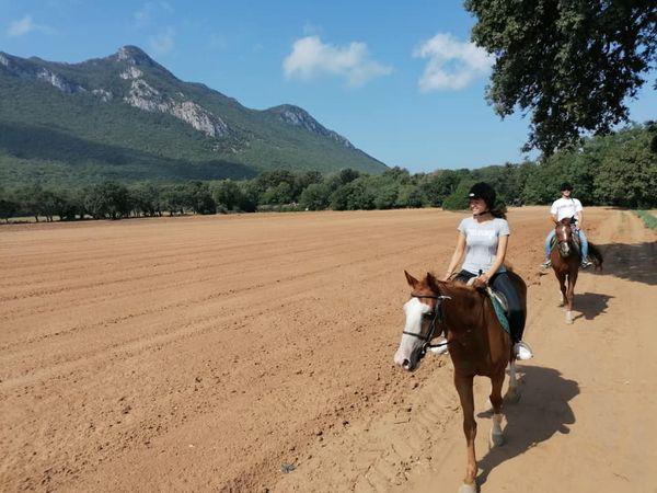 Explore Circeo National Park on horseback