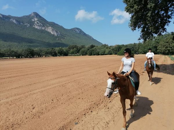 Esplora il Parco Nazionale del Circeo a cavallo